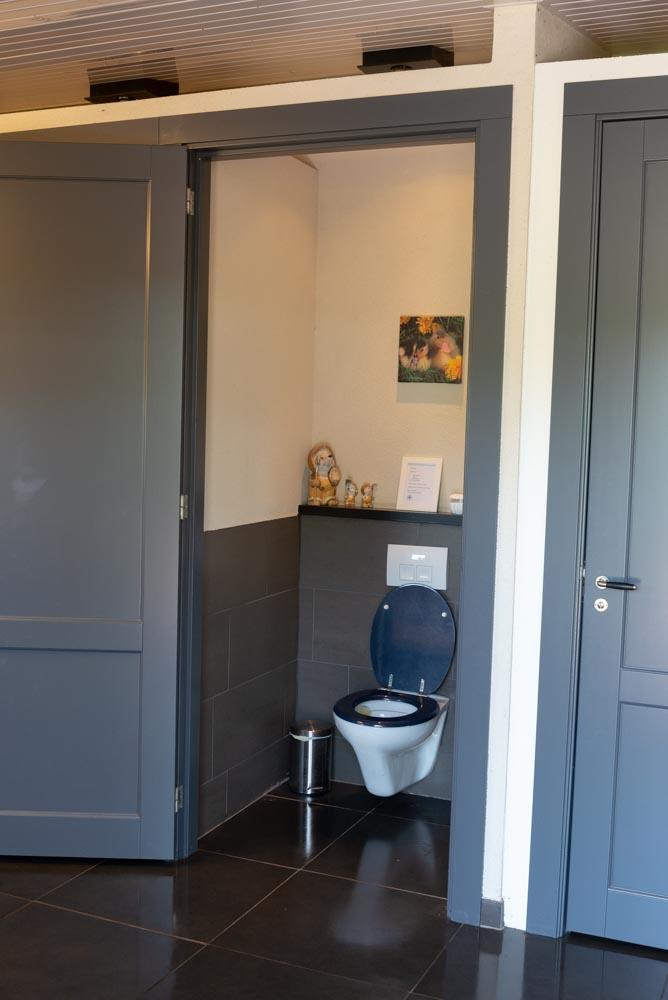 Schoon en hygiënisch toilet